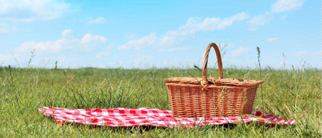 Sono arrivati i picnic!